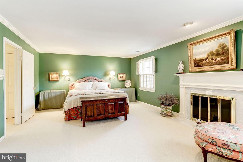 Large Master with Fireplace - 3827 N. TAZEWELL ST, ARLINGTON