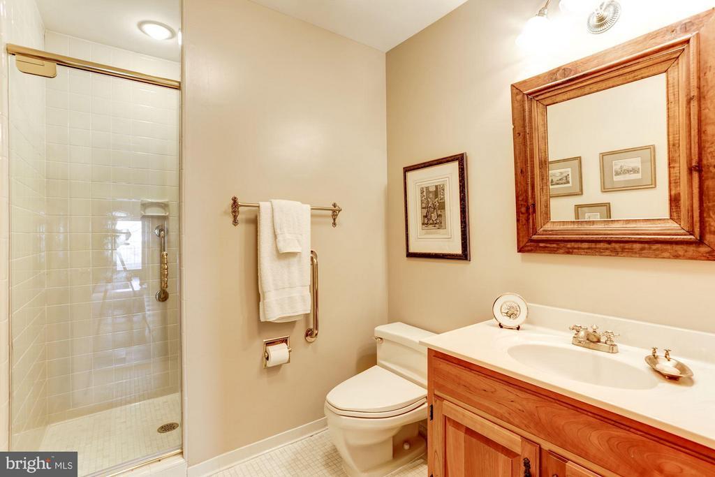 Basement bath - 3827 N. TAZEWELL ST, ARLINGTON