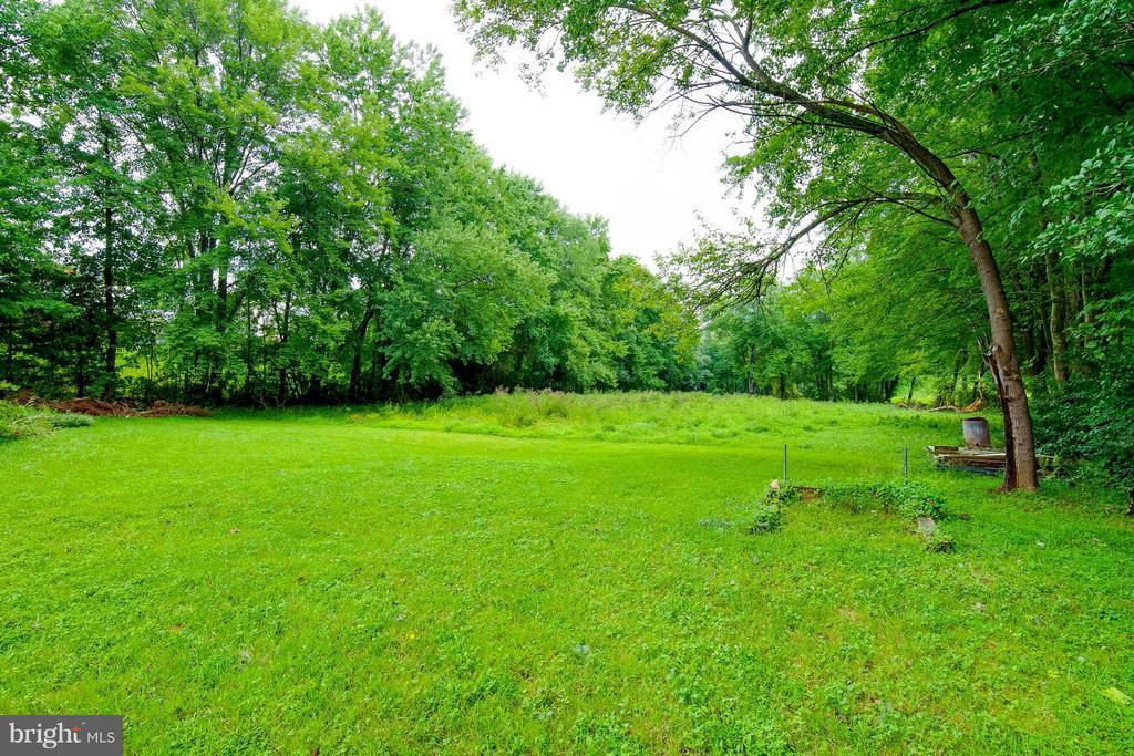 View of the backyard - 13305 SPRIGGS RD, MANASSAS