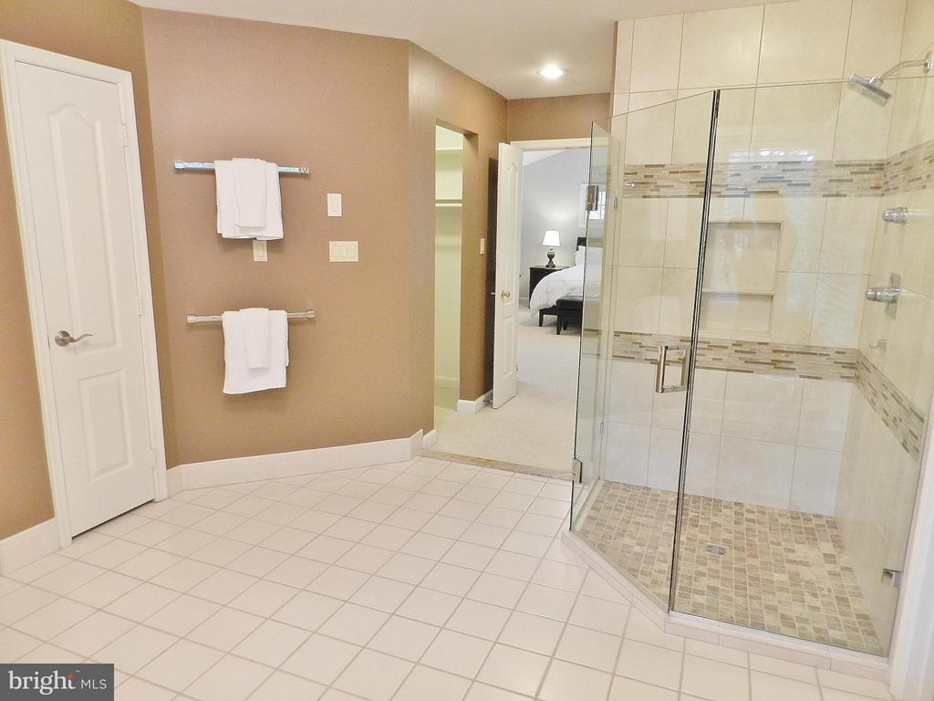 Master Bath with glass-enclosed shower) - 9974 STONE VALE DR, VIENNA