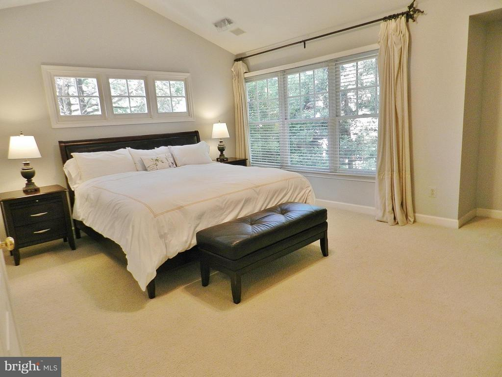 Gracious Master Bedroom~with numerous windows - 9974 STONE VALE DR, VIENNA