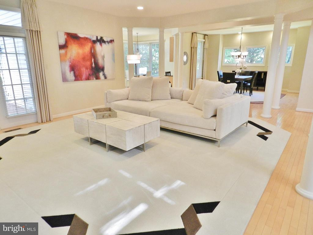 Spacious~and Bright~Living Room - 9974 STONE VALE DR, VIENNA