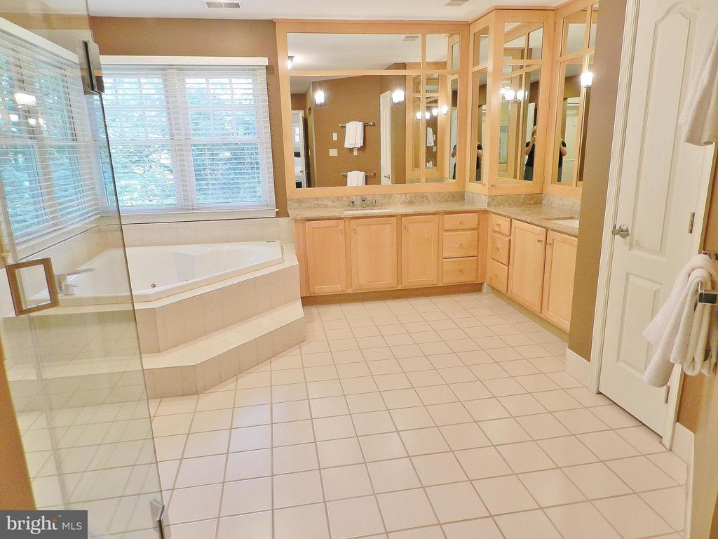 Lavish Master Bath, double vanities and jacuzzi - 9974 STONE VALE DR, VIENNA