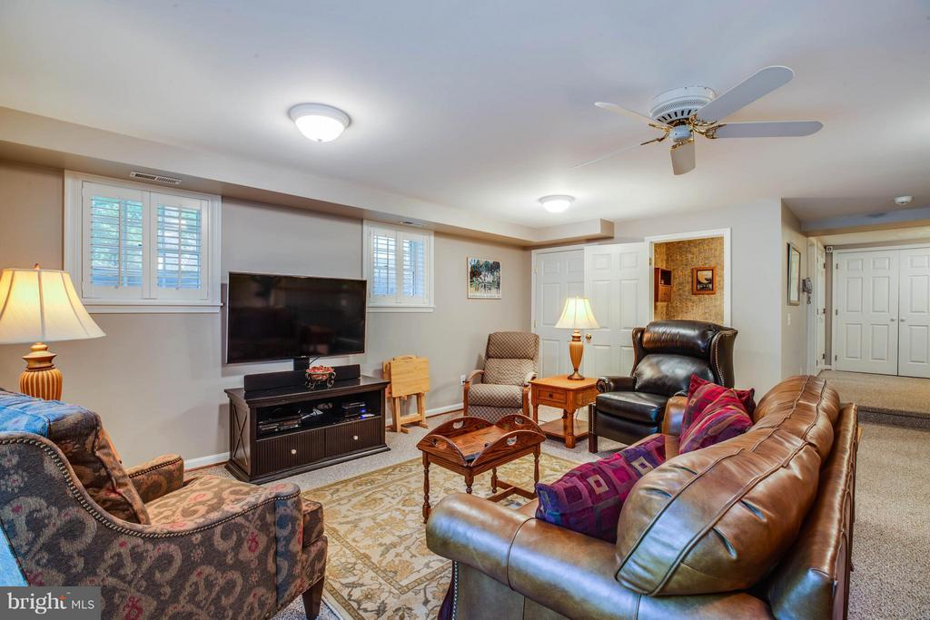 Rec Room in Lower Level - 214 TWIN LAKE DR, FREDERICKSBURG