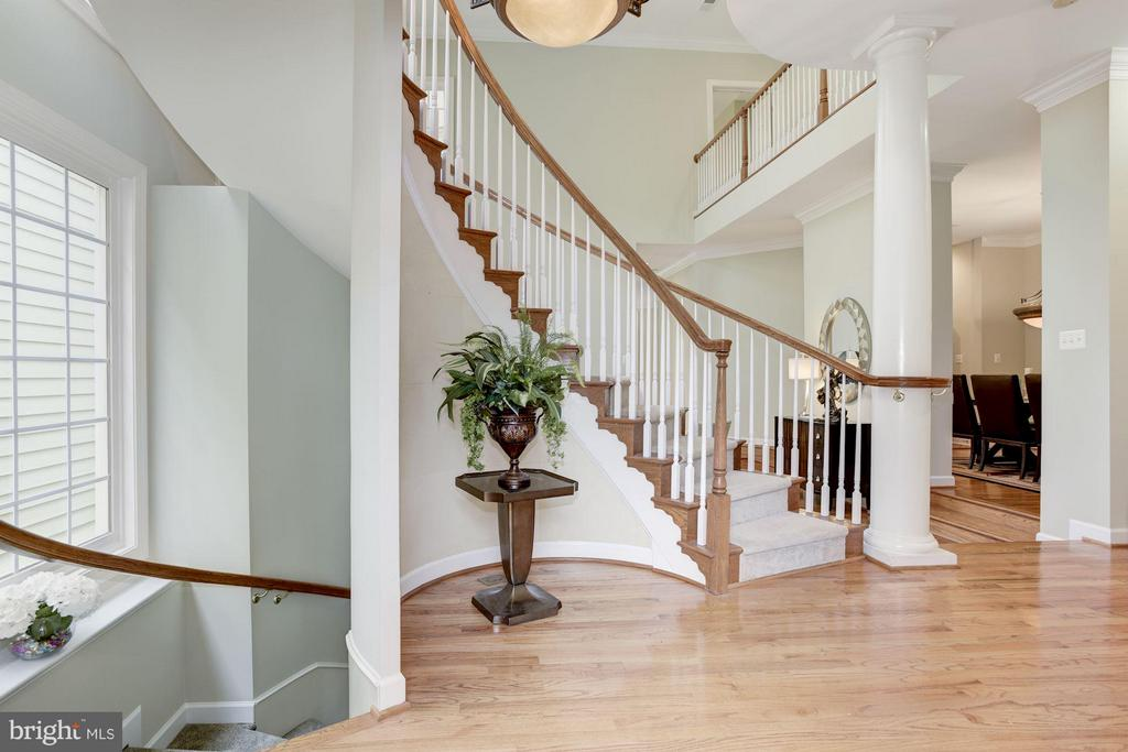 Family Room 2-Story Foyer - 20258 ISLAND VIEW CT, STERLING