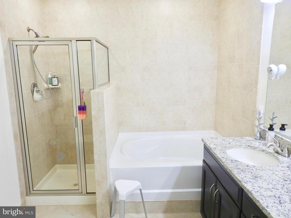 Bath (Master) - 319 UPTON CT, ARLINGTON