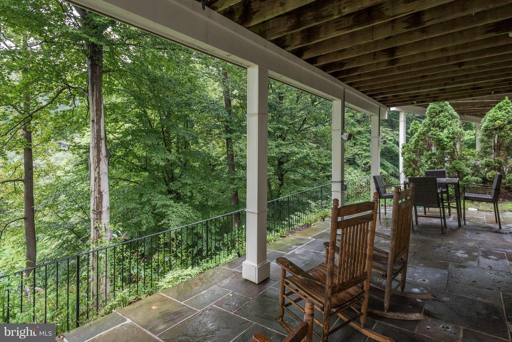 View  Lower Level Patio - 20258 ISLAND VIEW CT, STERLING