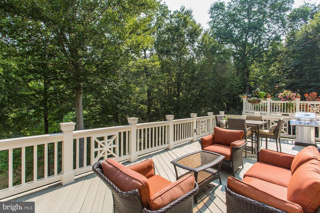 Spacious quiet deck looking in to woods - 20258 ISLAND VIEW CT, STERLING