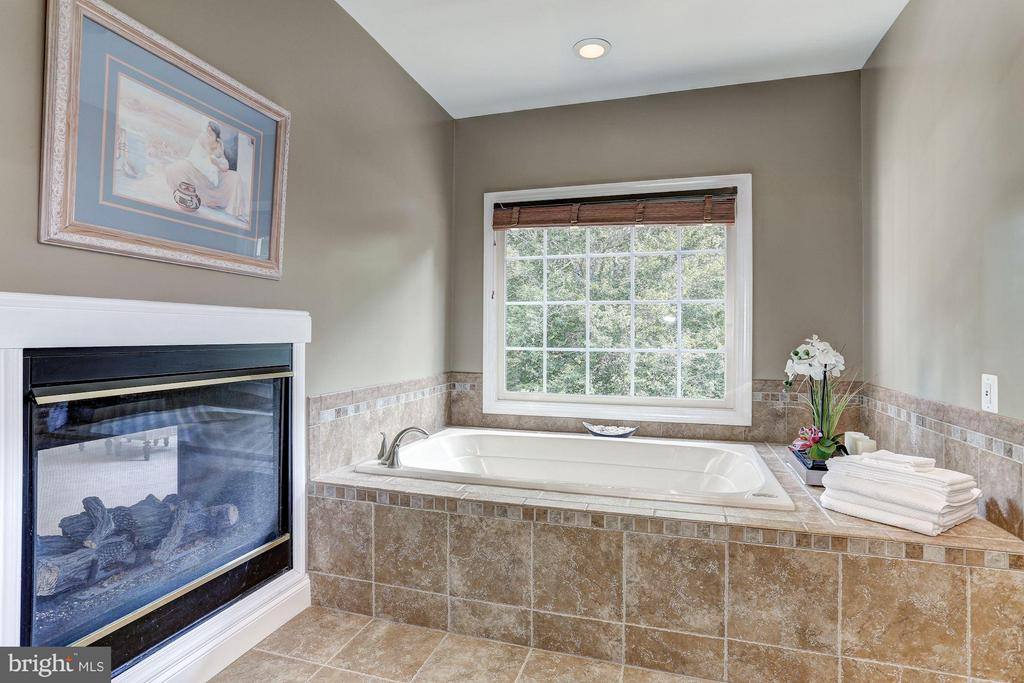 Bedroom (Master)Renovated, Upgraded,  Posh - 20258 ISLAND VIEW CT, STERLING