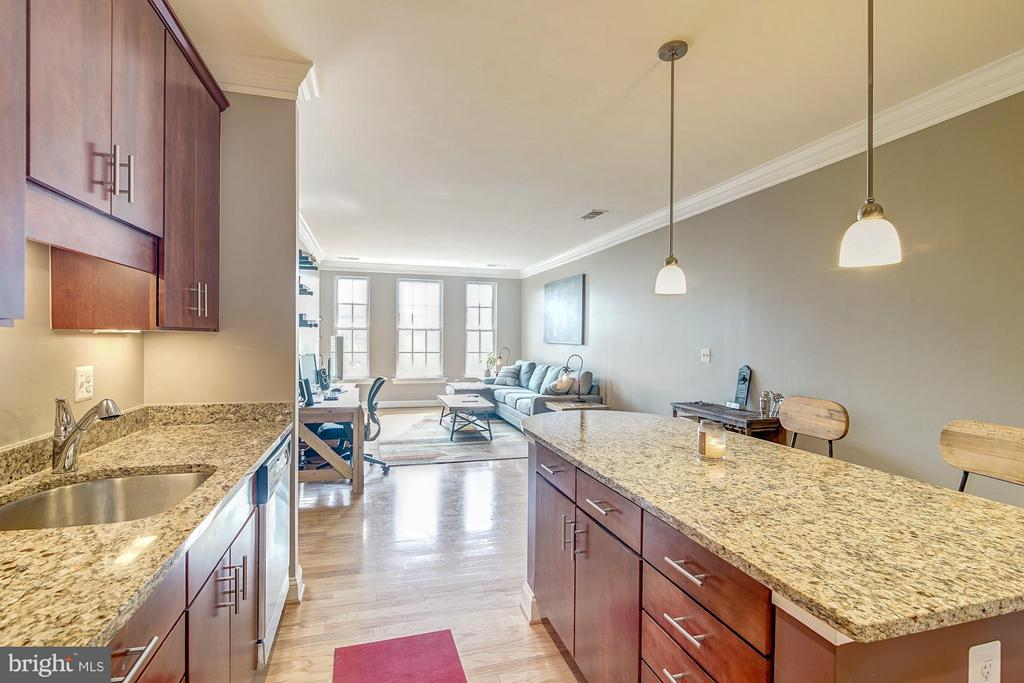 Open kitchen flow - 1023 ROYAL ST #306, ALEXANDRIA
