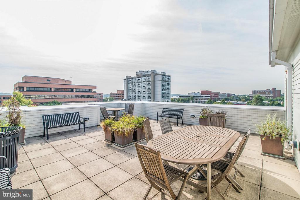 River views from community rooftop - 1023 ROYAL ST #306, ALEXANDRIA