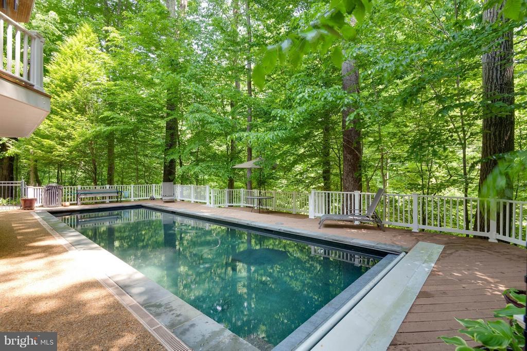 Lap Pool with Pebble Tech surface (20yrs) - 7111 TWELVE OAKS DR, FAIRFAX STATION