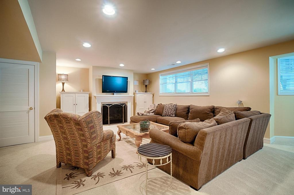 Basement - 42654 EXPLORER DR, ASHBURN