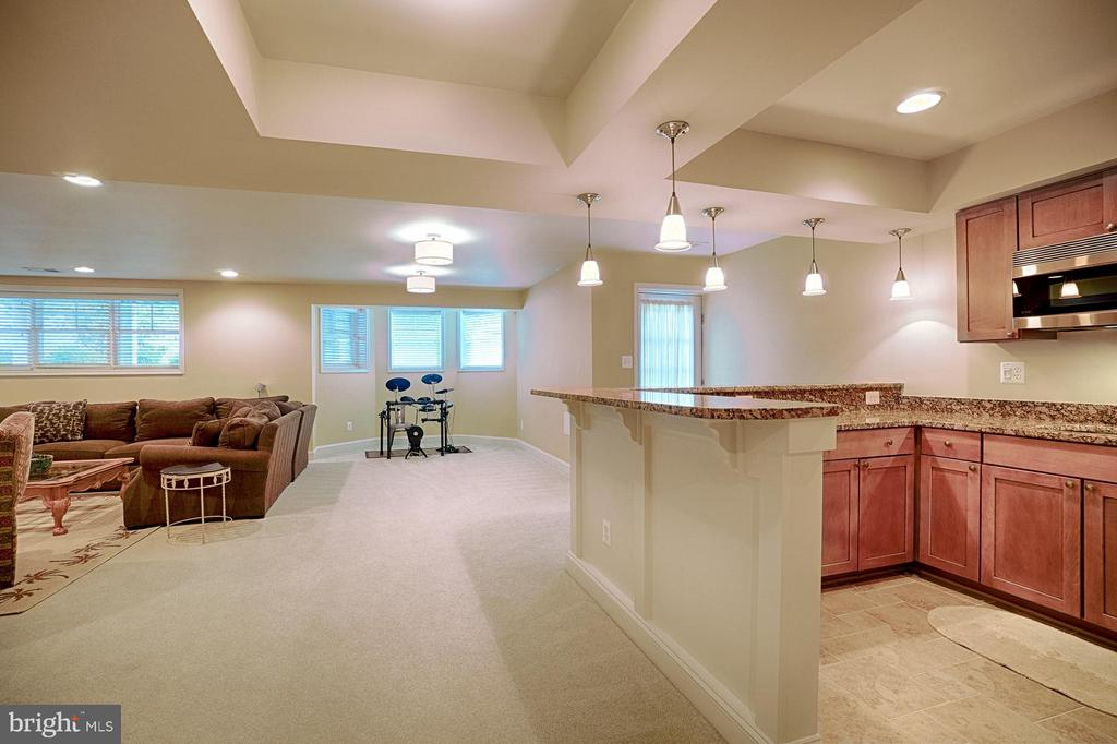 Basement with full wet bar - 42654 EXPLORER DR, ASHBURN