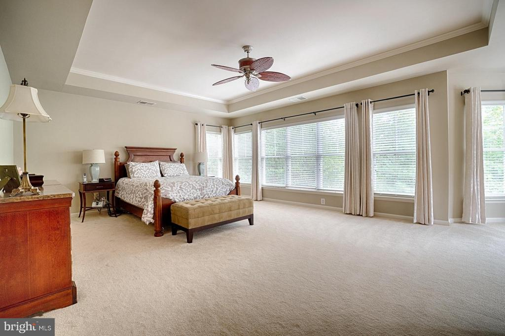 Bedroom (Master) - 42654 EXPLORER DR, ASHBURN