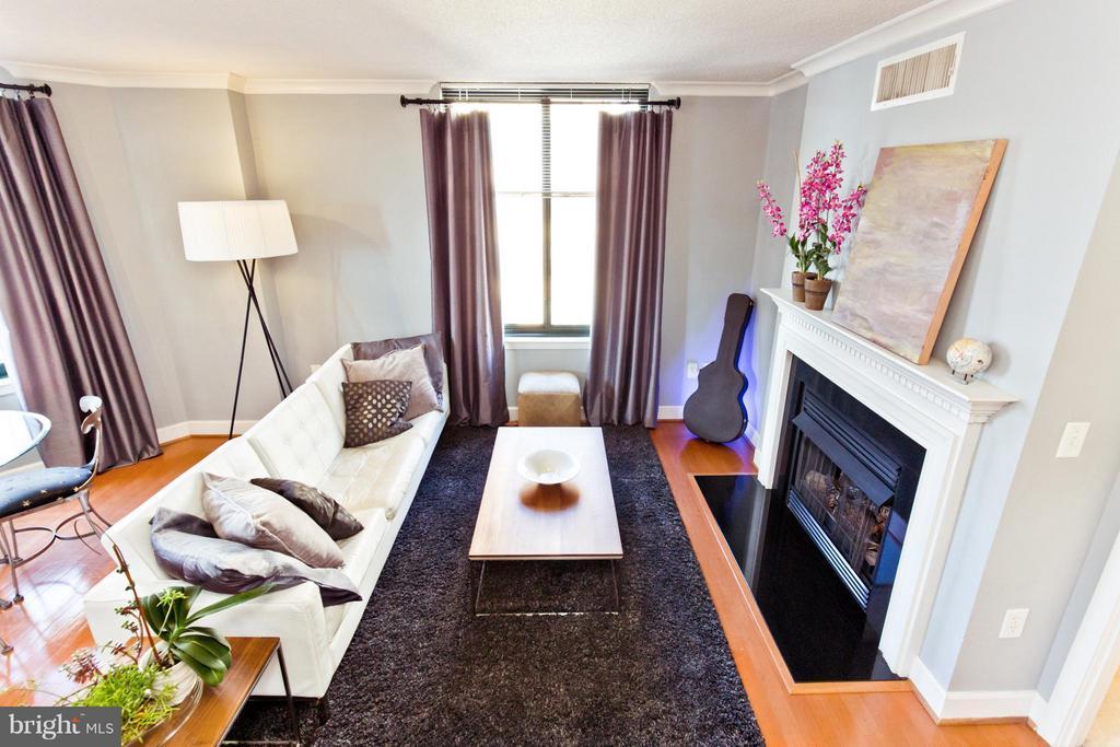 Living Room - 1201 GARFIELD ST N #806, ARLINGTON