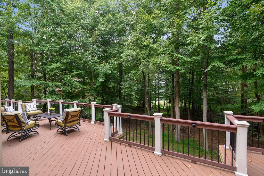 Deck view - Rear Lot opens to fairways - 306 SINEGAR PL, STERLING