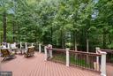 Deck view - Rear Lot opens to fairways - 306 SINEGAR PL, STERLING