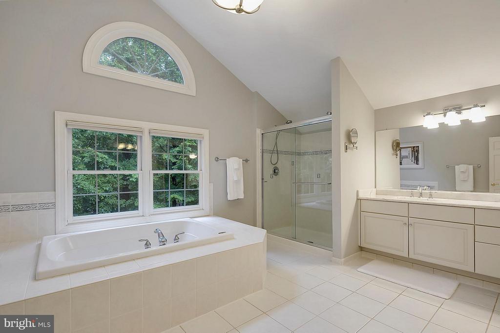 Master Bath w/ a View - 306 SINEGAR PL, STERLING