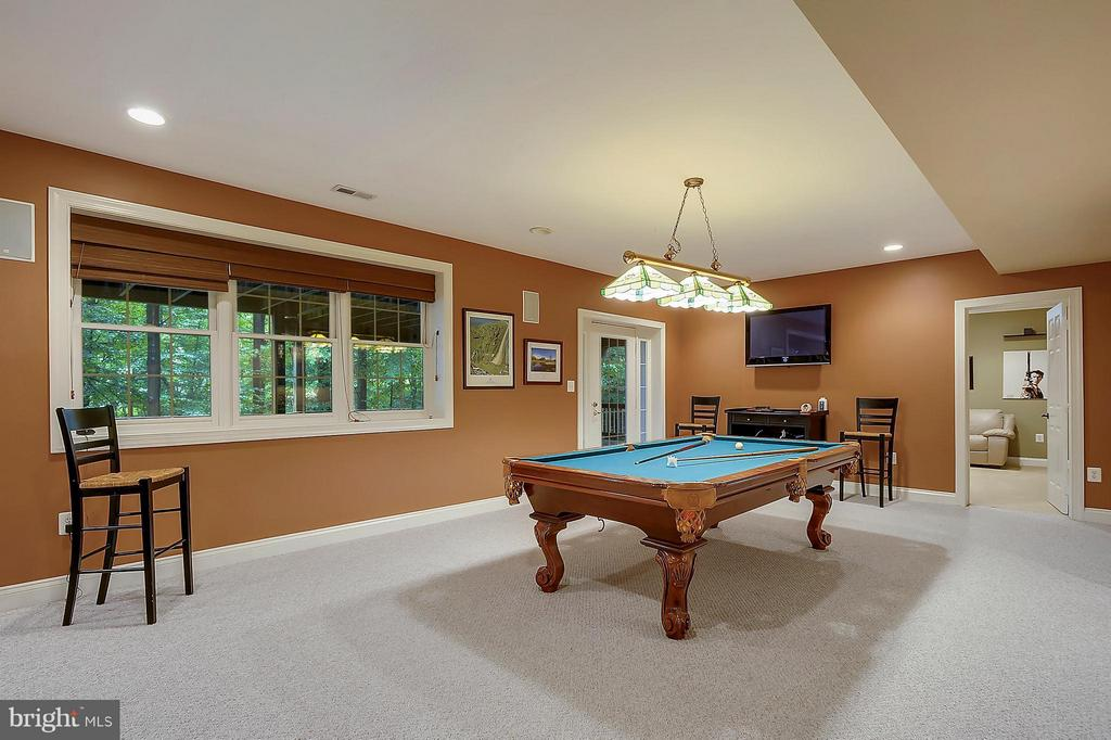 Billiards Room - 306 SINEGAR PL, STERLING