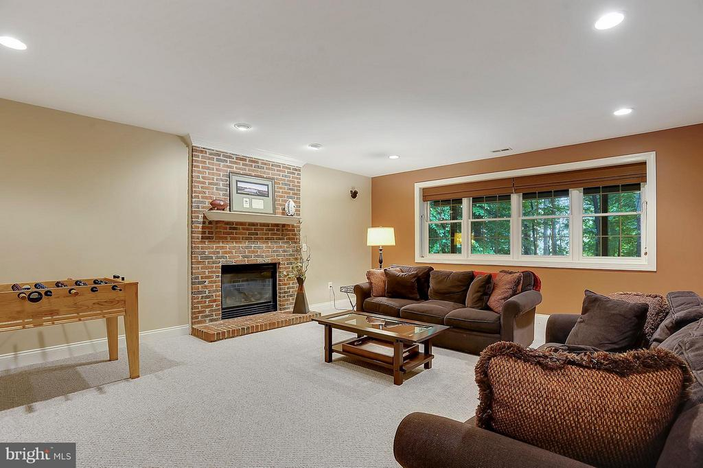 Lower Level Living Area w/ a View - 306 SINEGAR PL, STERLING