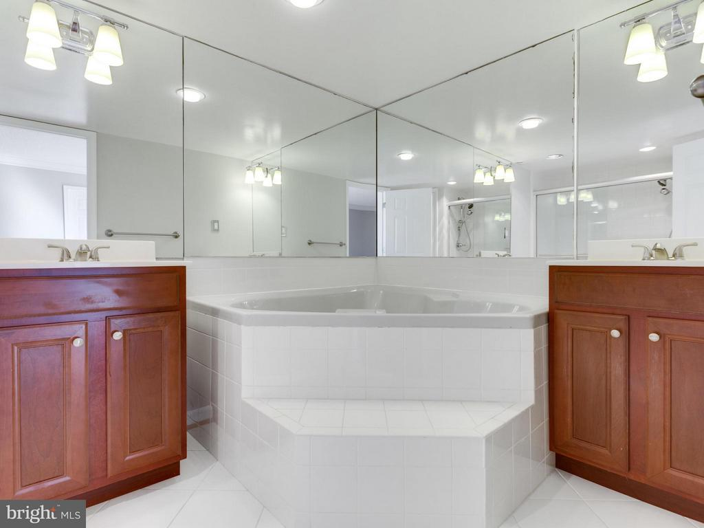 Bath (Master) - 1515 ARLINGTON RIDGE RD #202, ARLINGTON