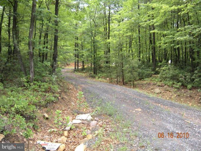 Land for Sale at Lot 13 Great Mountain Ln Winchester, Virginia 22602 United States