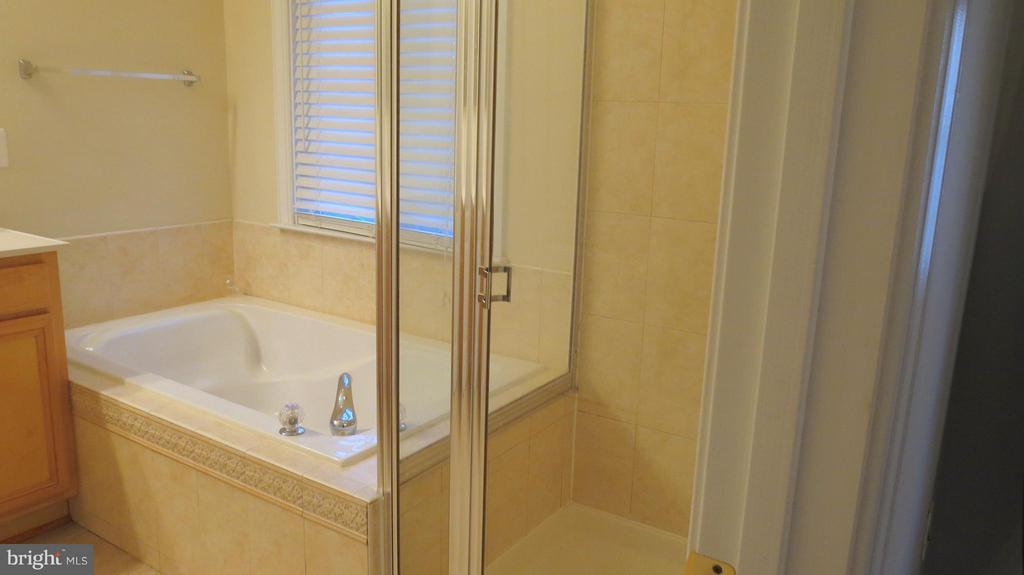 Separate Soaking Tub and Shower in Master Bath - 42573 REGAL WOOD DR, ASHBURN