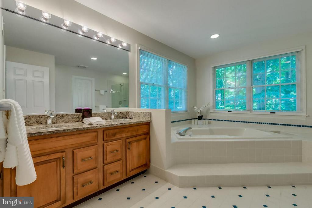 MBA: dual vanity, sep tub/shower, walk-in closet - 9879 HEMLOCK HILLS CT, MANASSAS
