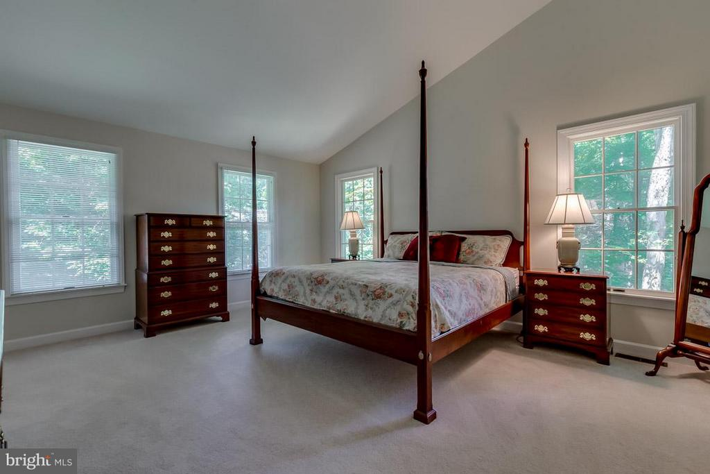 Master bedroom with vaulted ceilings - 9879 HEMLOCK HILLS CT, MANASSAS