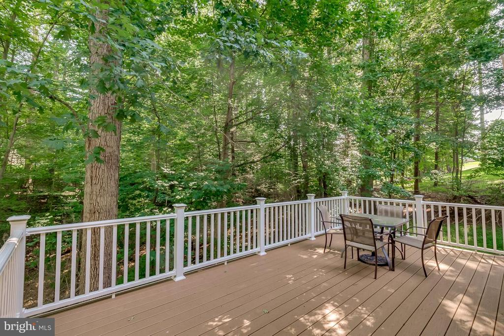 Entertain on rear deck. - 9879 HEMLOCK HILLS CT, MANASSAS
