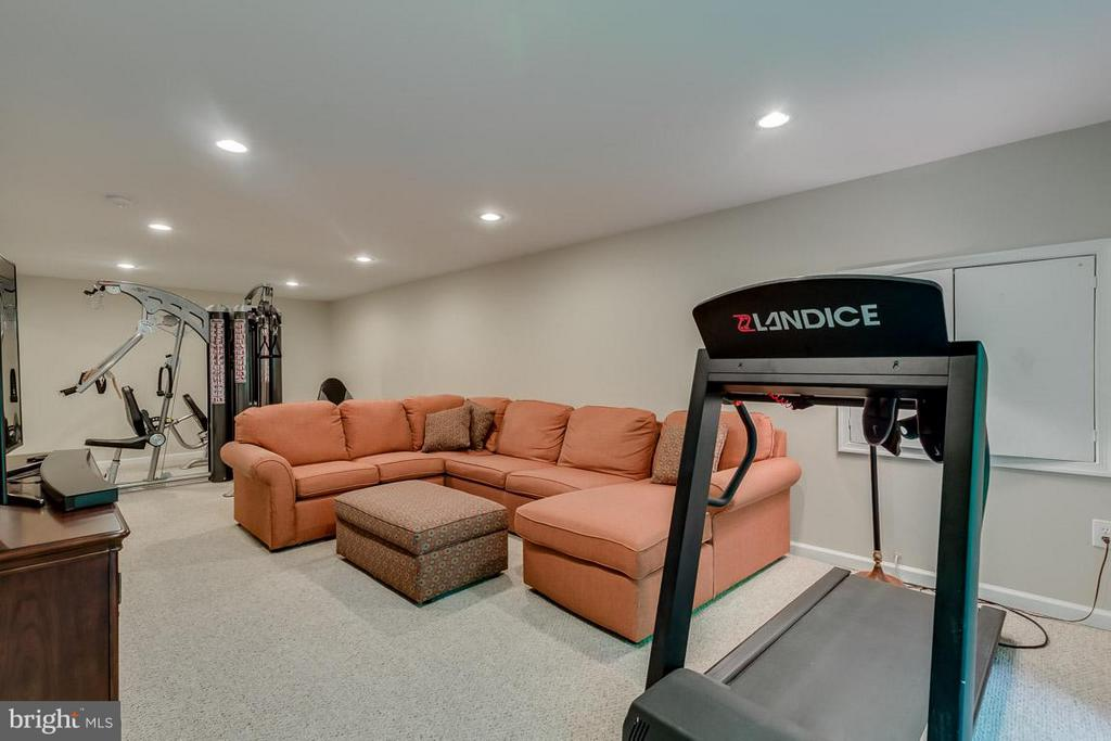 Lots of space for gaming, working out and more - 9879 HEMLOCK HILLS CT, MANASSAS