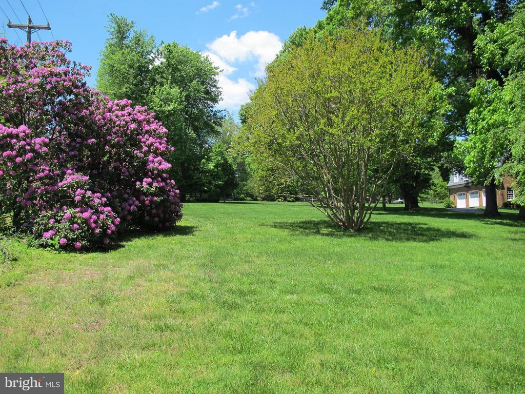 Blooming rhododendron, azalea, magnolia, cherry... - 12910 COMPTON RD, CLIFTON