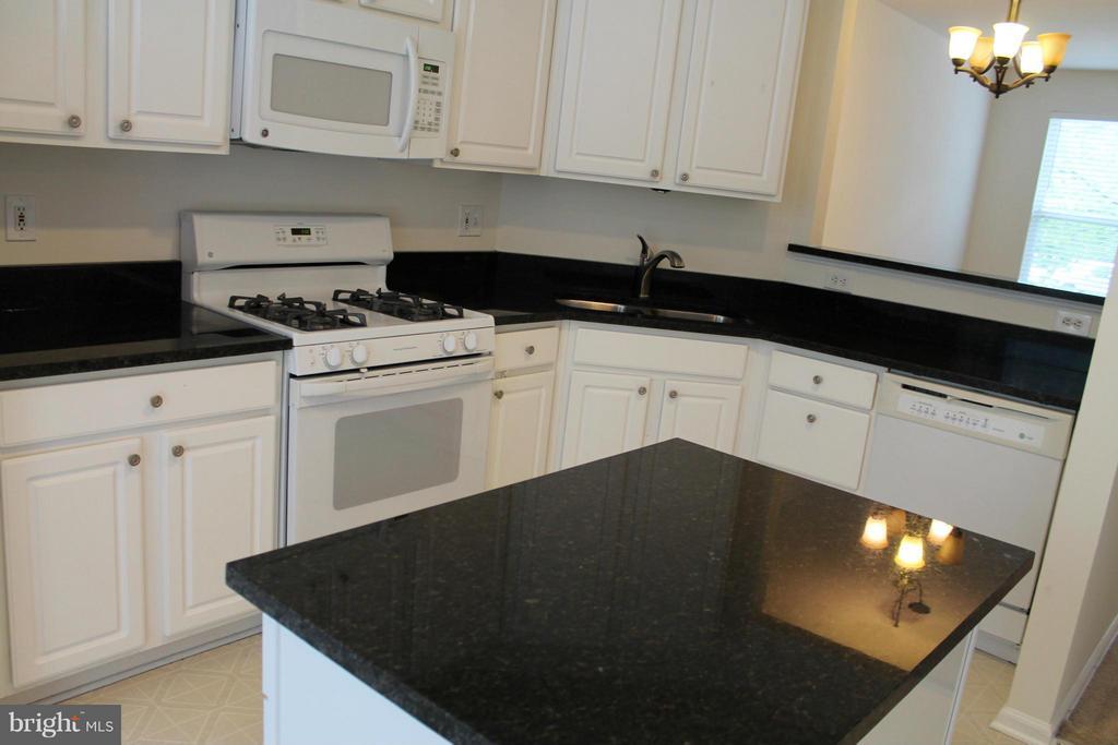 Kitchen - 21503 HARVEST GREEN TER, BROADLANDS