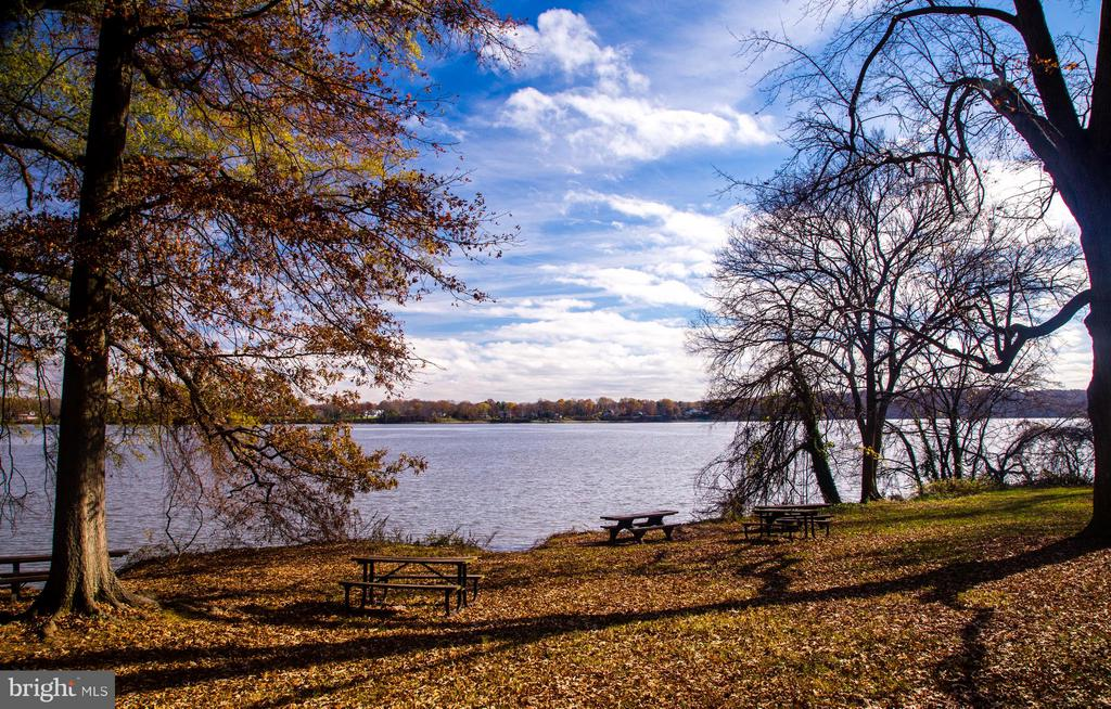 Potomac River - 508 PRINCE ST, ALEXANDRIA