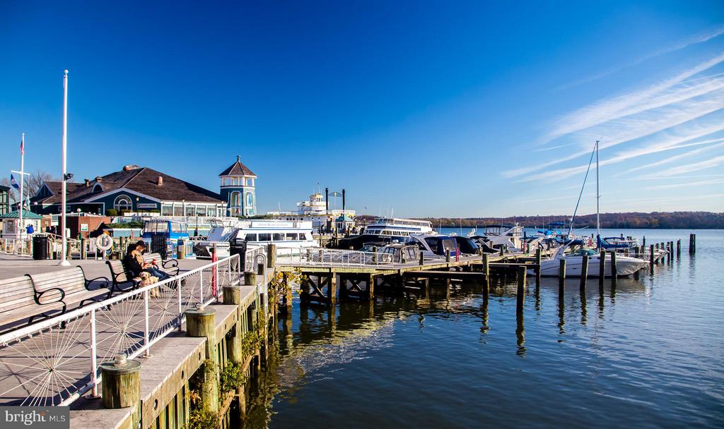 Old Town Waterfront - 508 PRINCE ST, ALEXANDRIA
