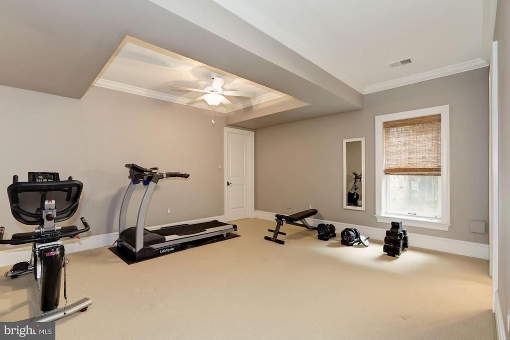 Exercise Room - 8119 SPRING HILL FARM DR, MCLEAN