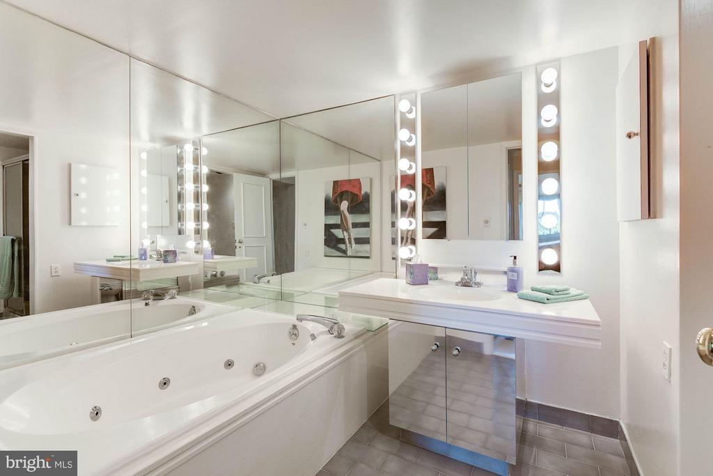 Guest Full Bath with jacuzzi and separate shower - 1250 WASHINGTON ST S #510 AND 508, ALEXANDRIA