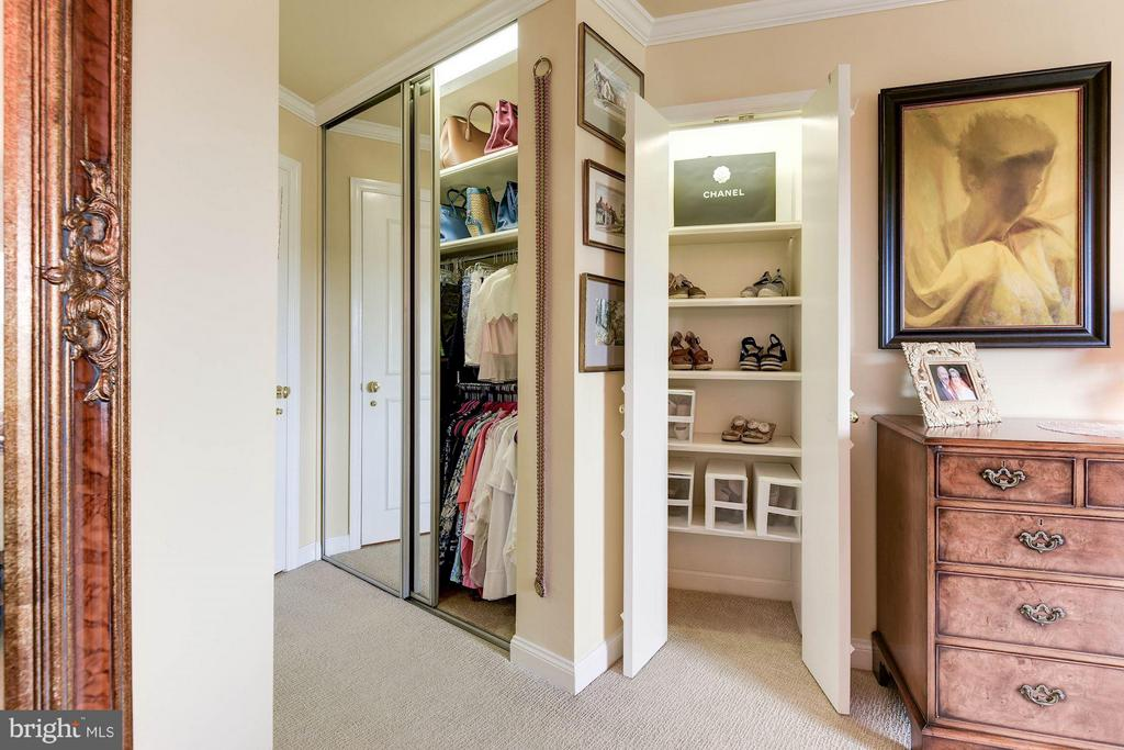 Additional Master Bedroom Closets - 1250 WASHINGTON ST S #510 AND 508, ALEXANDRIA