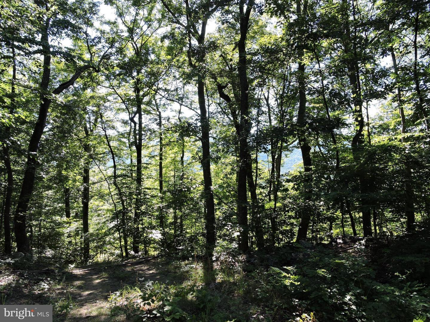 Land for Sale at Jacoby Ln. Berkeley Springs, West Virginia 25411 United States