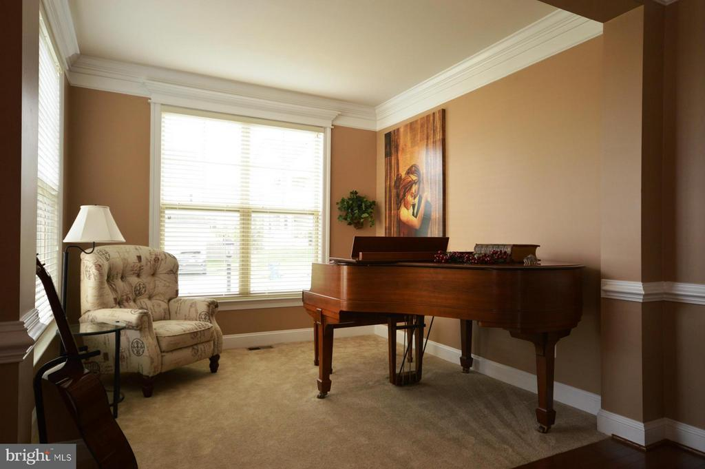 Living Room - 42790 MACAULEY PL, ASHBURN