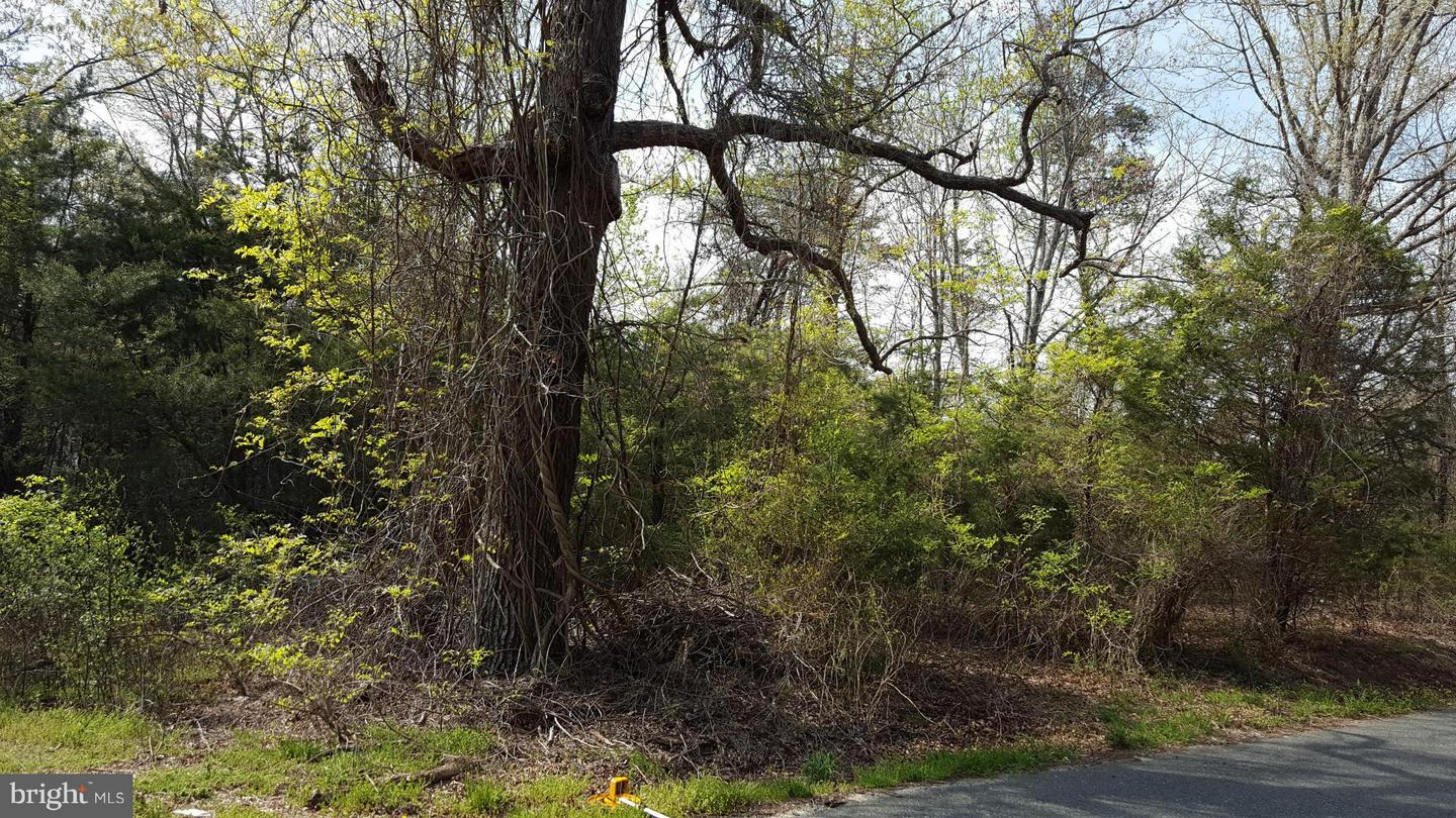 Photo of home for sale at 14338 Chastine Drive, King George VA