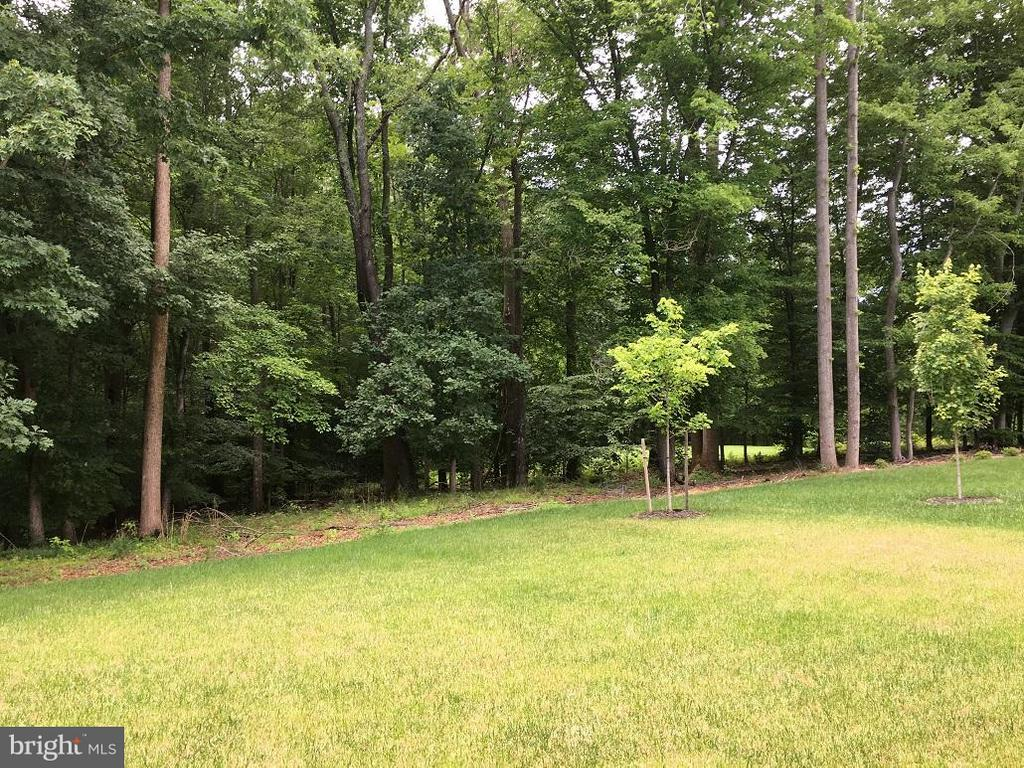 View - 0 HICKORY FALLS CT #C, WOODBRIDGE