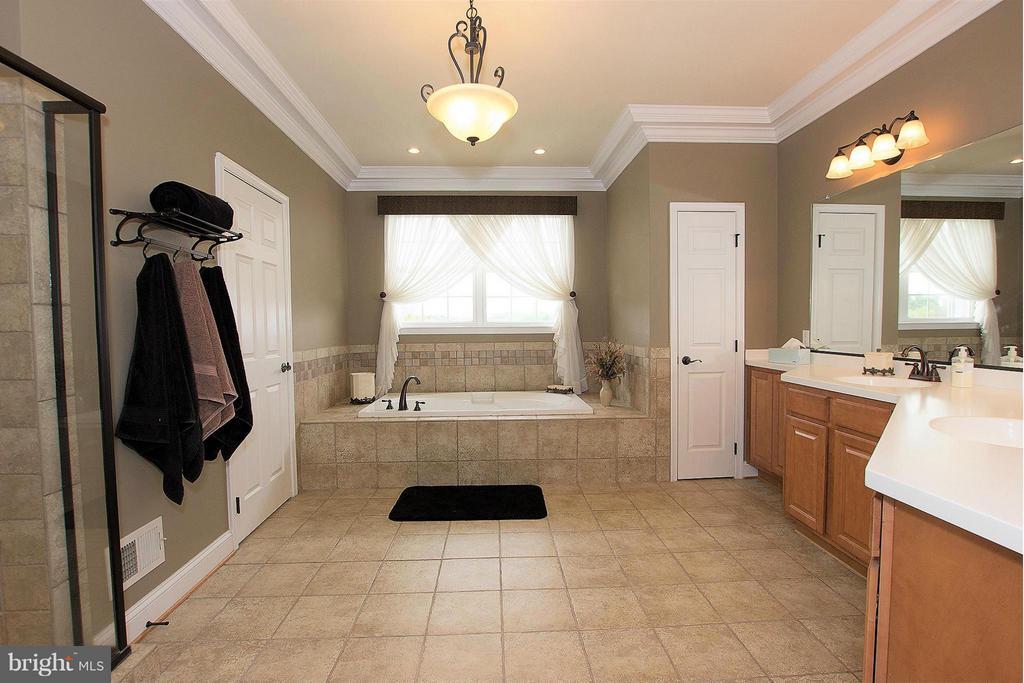 Bath (Master) - 38651 RICKARD RD, LOVETTSVILLE