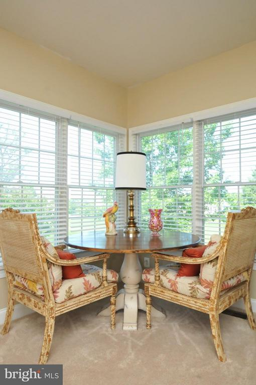 Enjoy your high -Tea in this Den/Study - 19849 BETHPAGE CT, ASHBURN