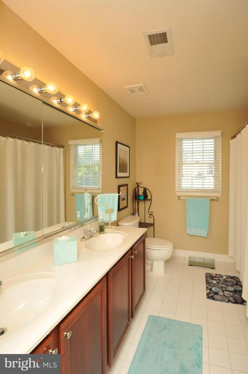Hall Bath with Dual Vanities - 19849 BETHPAGE CT, ASHBURN