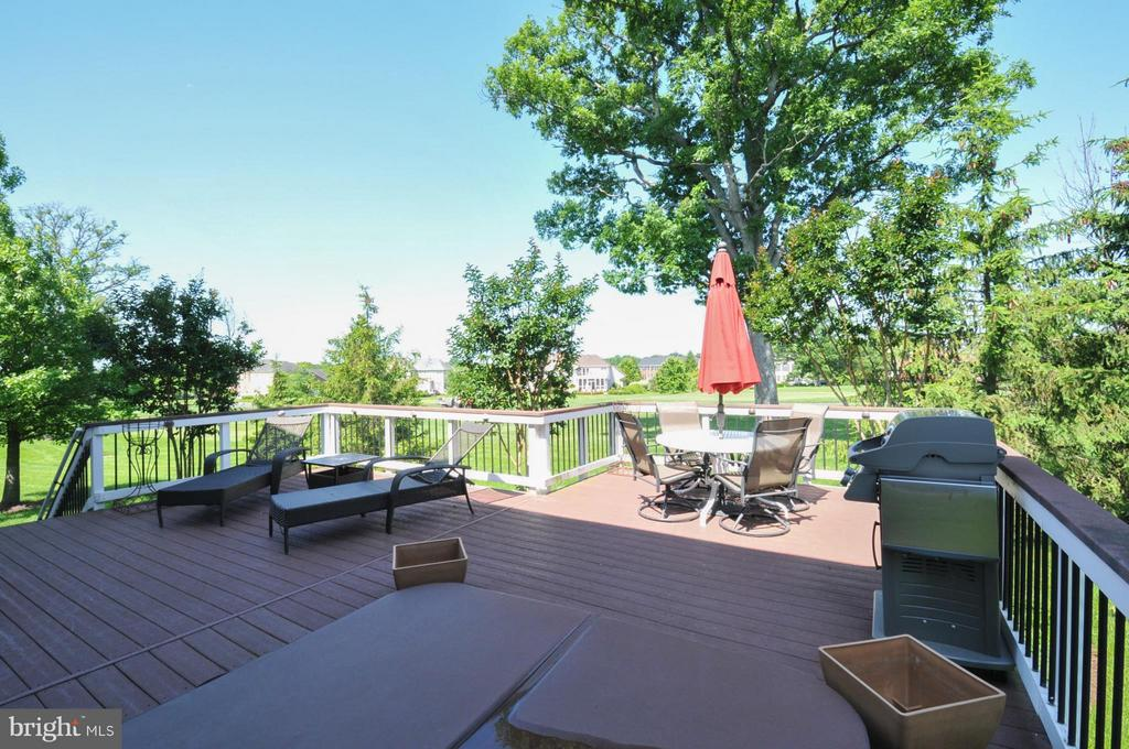 Oversized Trex Deck with Built -in Hot Tub - 19849 BETHPAGE CT, ASHBURN