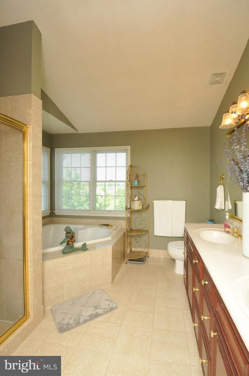 Master Bath w/12x12 Marble and Ultra shower. - 19849 BETHPAGE CT, ASHBURN