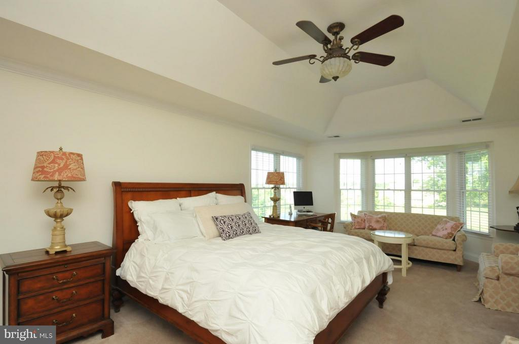 Master bedroom with Coffered Ceiling - 19849 BETHPAGE CT, ASHBURN