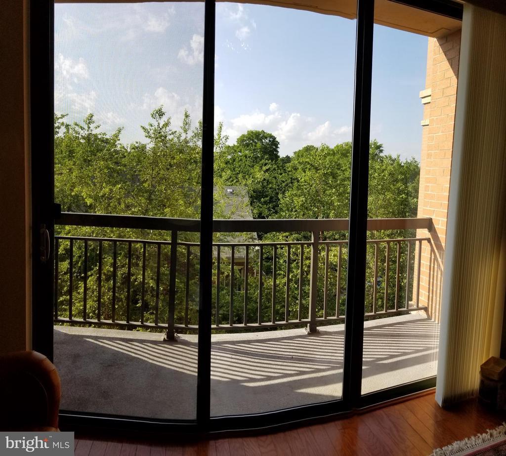 Balcony - 3625 10TH ST N #401, ARLINGTON